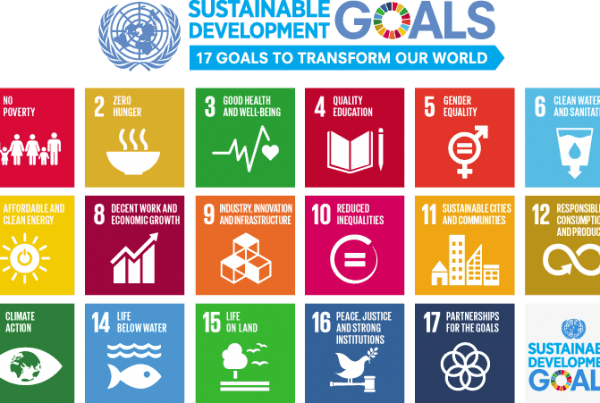 Rimeco proudly supports the UN's sustainable development goals